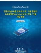 인공지능(AI)용 반도체 소재·기술 동향과 뉴로모픽(Neuromorphic) 연구·기술 개발 동향